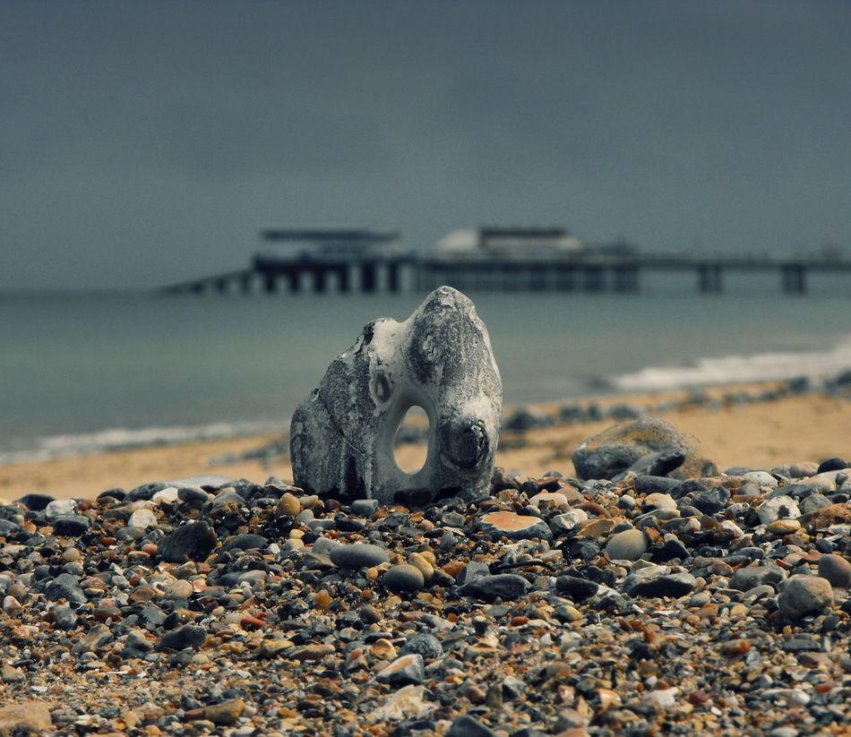 Beautiful stock photos of rock, Beach, Bizarre, Commercial Dock, Day