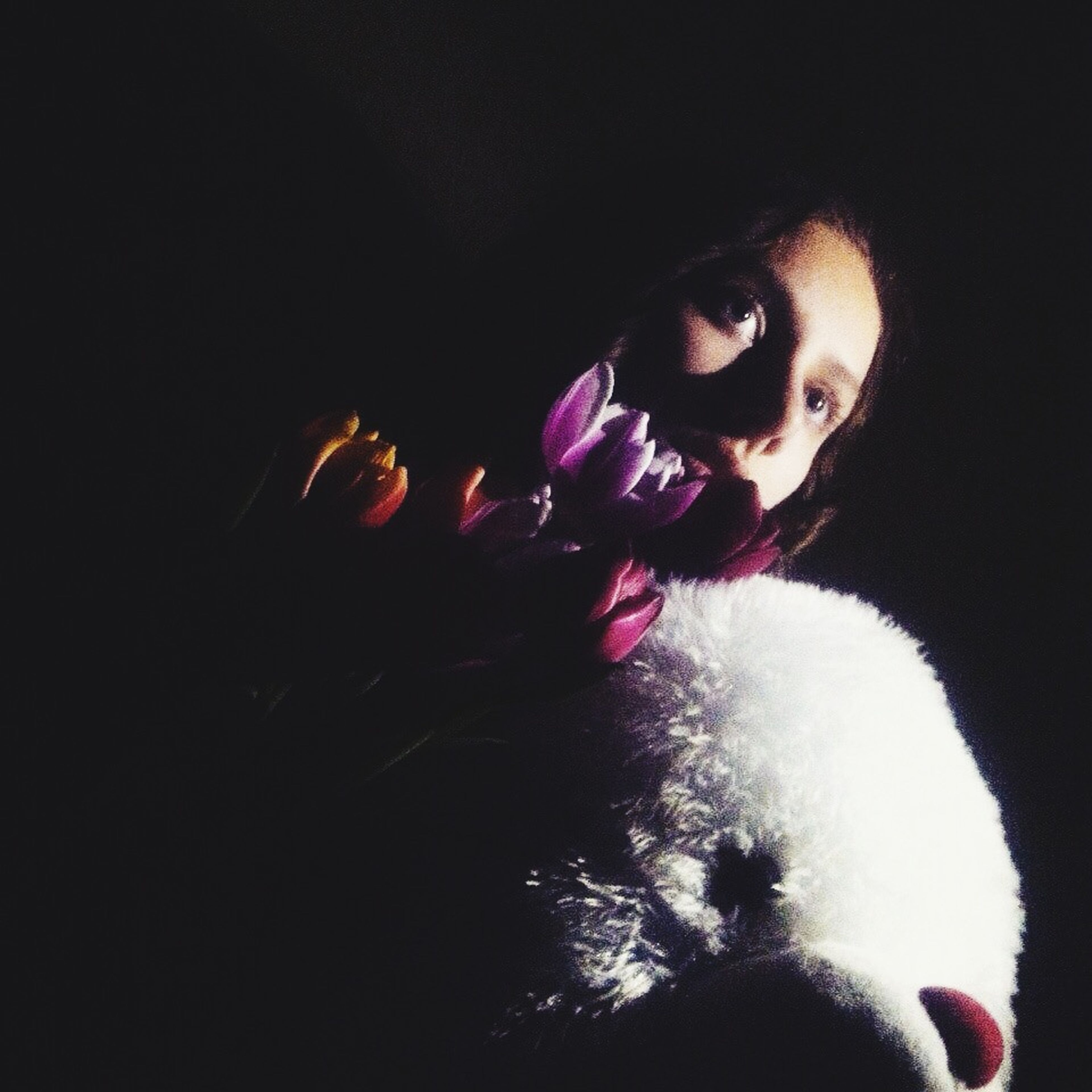 indoors, night, illuminated, studio shot, portrait, black background, looking at camera, close-up, headshot, home interior, front view, celebration, copy space, lifestyles, leisure activity, childhood, toy, halloween