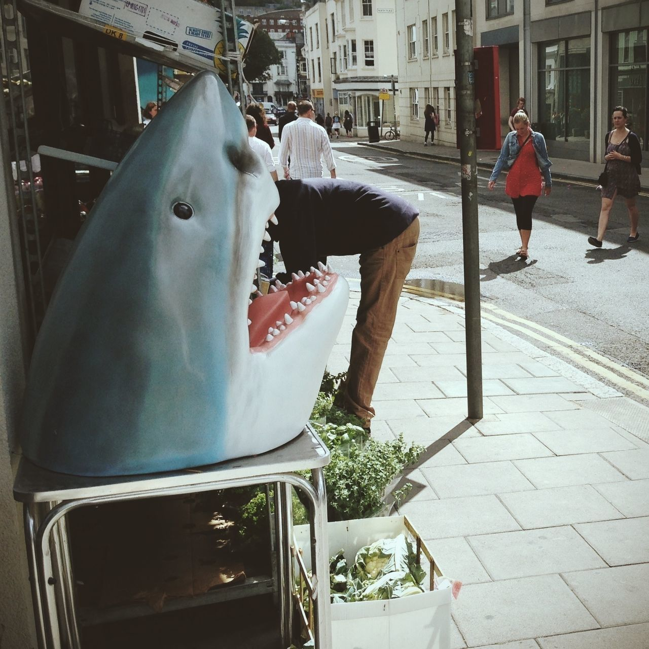 Beautiful stock photos of shark, Animal Mouth, Animal Representation, Architecture, Bending