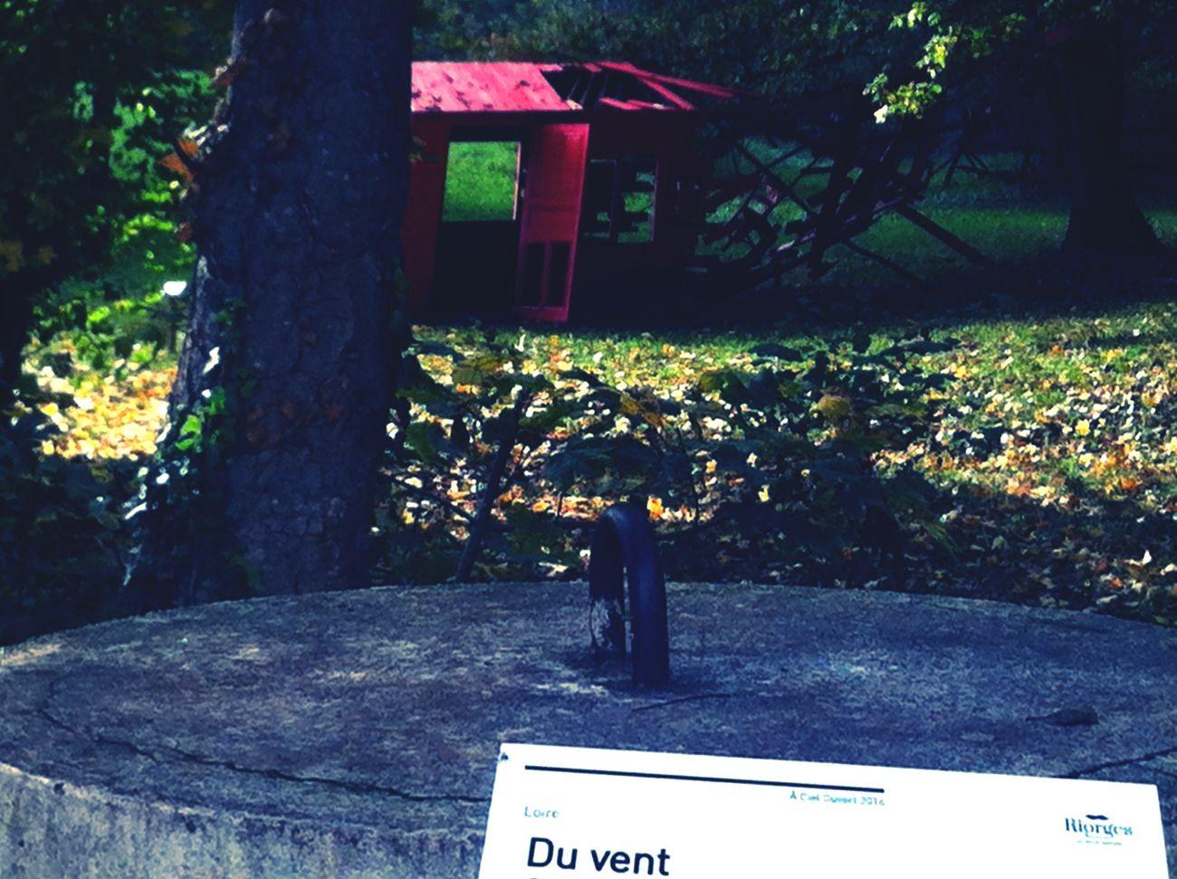 Sculpture Entre Ombre Et Lumiere