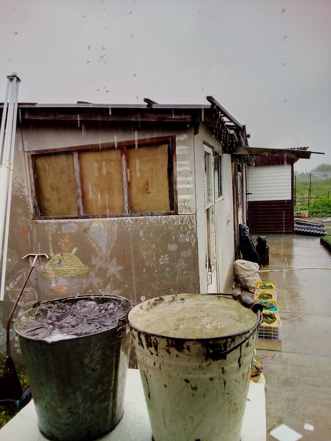 Summer rain in the rural yard Rain Summer Rural Scene Village Country Yard Bucket Buckets Water Flowing Water Drops Raindrops Bubbles In Water Wet Wet Day July Two Is Better Than One