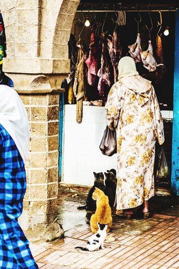 Maroc Marocco Women Shopping ♡ Meat! Meat! Meat! Cat Cats Souk Souks Essaouira Frau Katzen Einkaufen Metzger The Street Photographer - 2017 EyeEm Awards