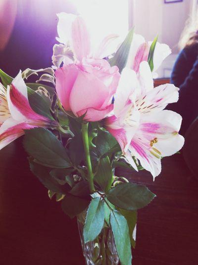Flowers. Gorgeous. TPOL Flowers
