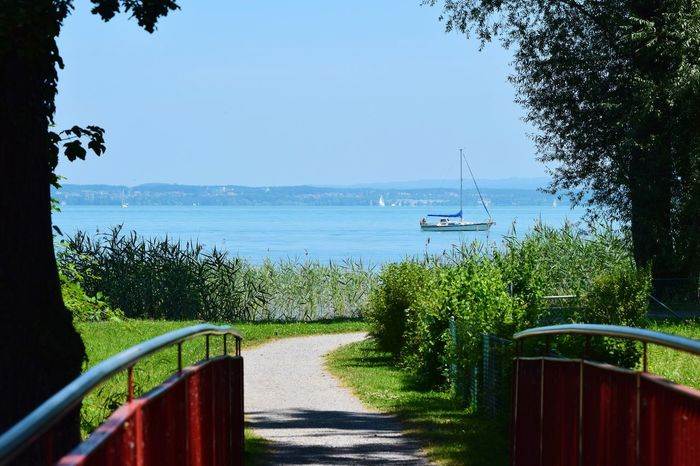 Tree Day Growth Water Nature Outdoors Railing Nautical Vessel Transportation Sunlight Clear Sky Tranquility No People Green Color Beauty In Nature Scenics Plant Grass Sea Shadow Bodenseebilder Thurgau Brücke Brückengeländer Schilf