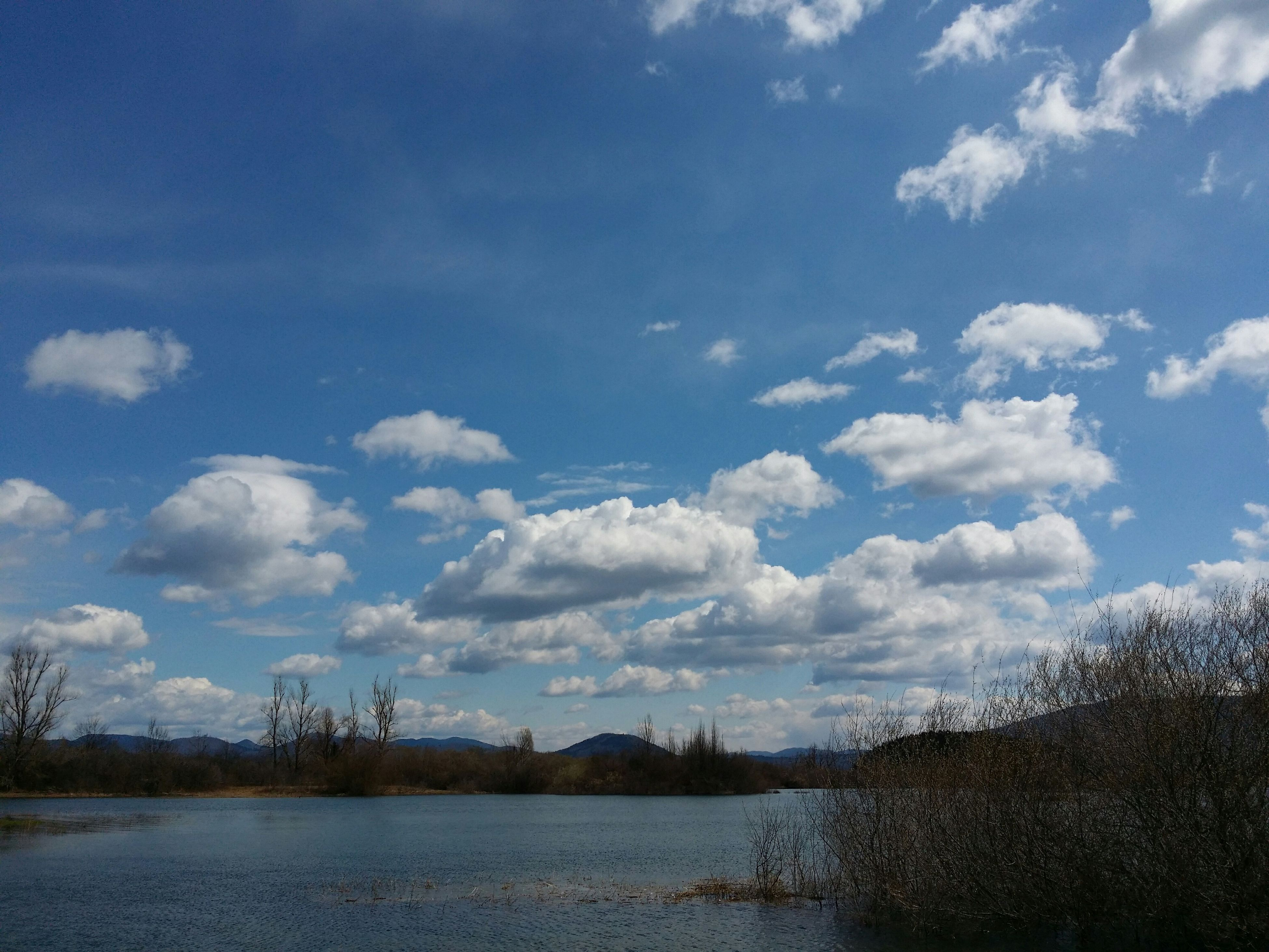 sky, tranquility, tranquil scene, cloud - sky, scenics, nature, tree, beauty in nature, cloud, landscape, field, water, blue, cloudy, day, no people, outdoors, bare tree, non-urban scene, weather
