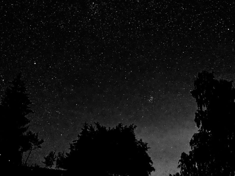 Nachtfotografie Sternenhimmel Astronomy Beauty In Nature Galaxy Low Angle View Nature Night No People Outdoors Sky Star - Space Sternennacht Tree