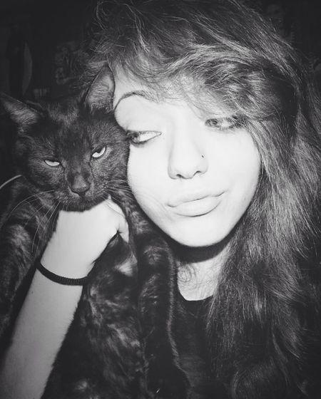 Hello World Enjoying Life Model Cat
