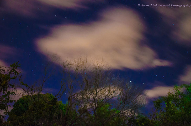 Beauty In Nature Cloud - Sky Nature Night No People Scenics Sky Star - Space Tranquility Tree