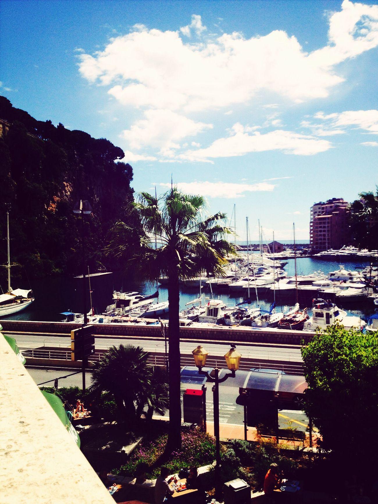 Monaco Landscape Nature ??