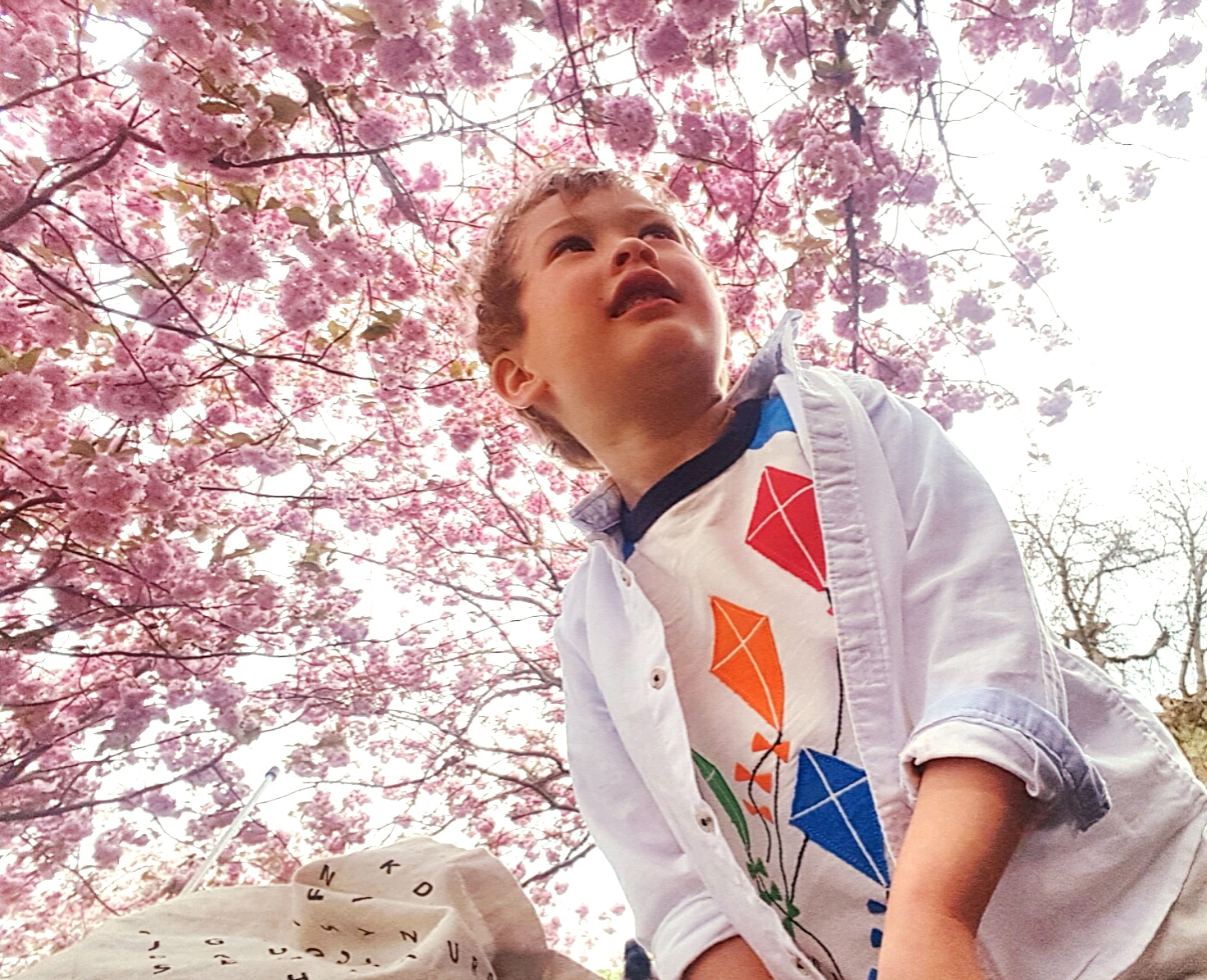 person, tree, lifestyles, leisure activity, casual clothing, childhood, looking at camera, young adult, elementary age, portrait, girls, three quarter length, park - man made space, front view, low angle view, smiling, standing, branch