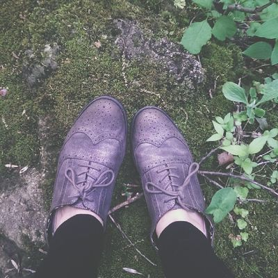 Moss and Oxfords ?