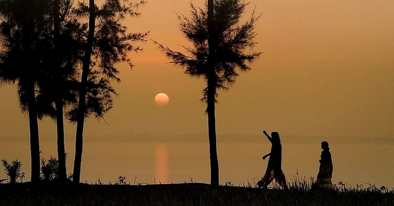 silhouette, sunset, tree, sky, nature, field, leisure activity, beauty in nature, scenics, real people, outdoors, moon, lifestyles, men, togetherness, day, astronomy, people