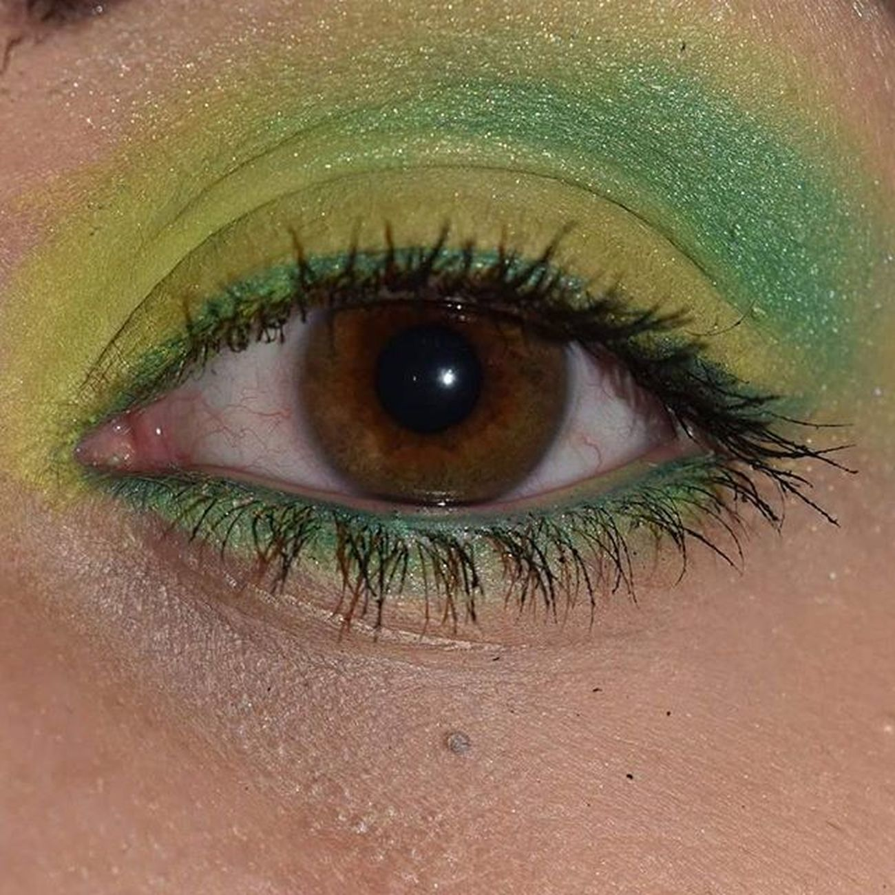 Mein Amu zur Blogparade Traveltheworld Thema war Brasil mehr dazu auf meinen Blog. @makeuprevolution Makeuprevolution Colourchaos Eyeslikeangels Eyesmakeup Makeupartist Makeupaddict Blogger Beautyblogger Makeupblogger Beautyblogger_de Yellowgreen Augenmakeup