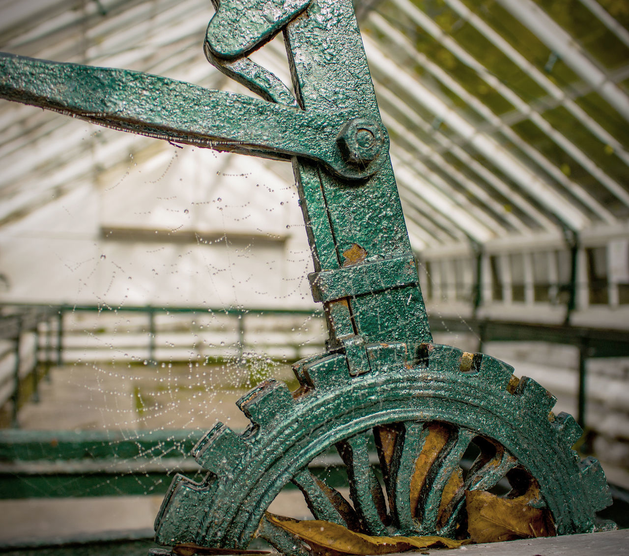 Close up shot of an abandoned Victorian greenhouse and a wynch with leaves Abandoned & Derelict Abandoned Buildings Close-up Day Focus On Foreground Green Color Greenhouse Machinery No People Victorian