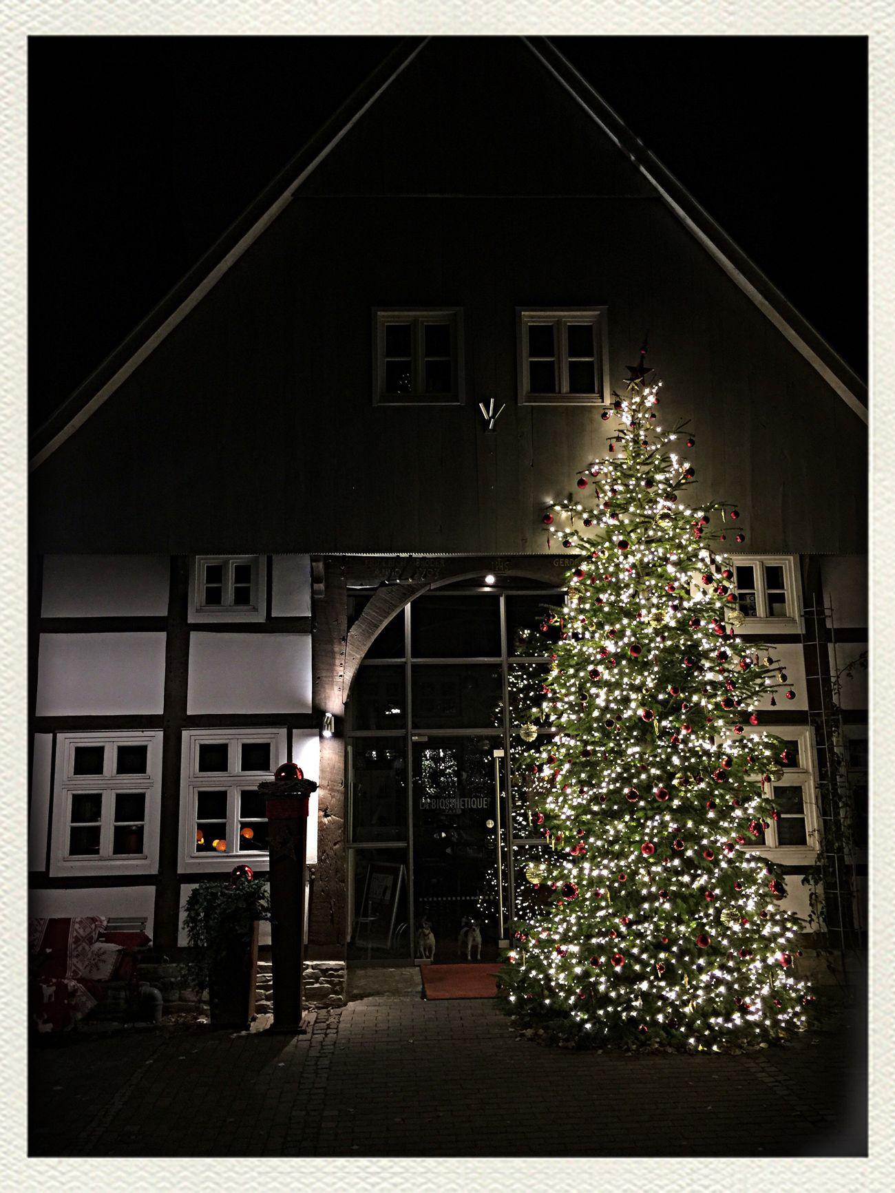 Weihnachtsfriseur Christmas Tree Weihnachtsbaum
