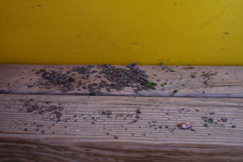 Wall Abondoned Abstract Dirty No People Wooden Texture Yellow
