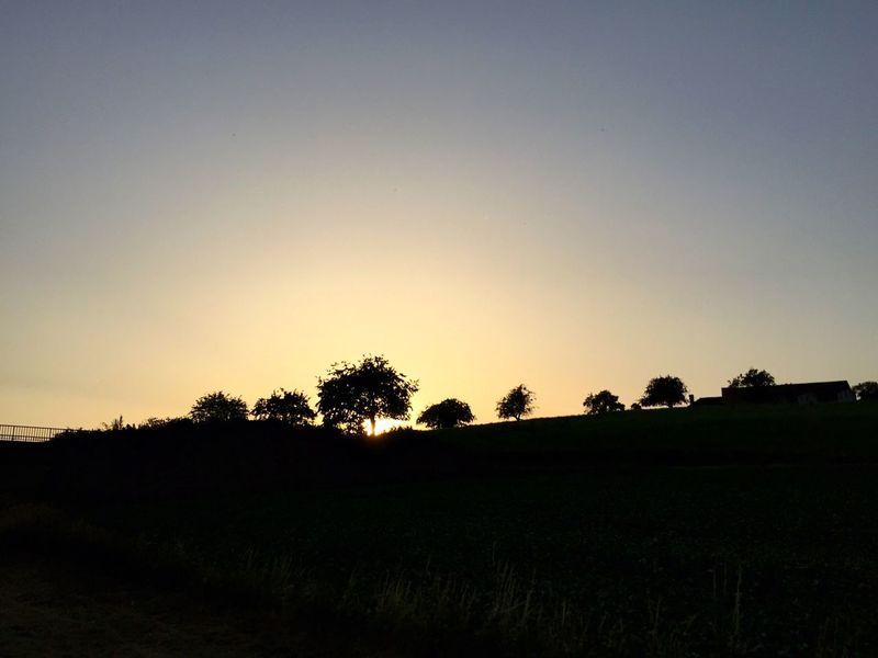 Suisse  Silhouette Sunset Silhouettes Yverdon-les-Bains Vaud