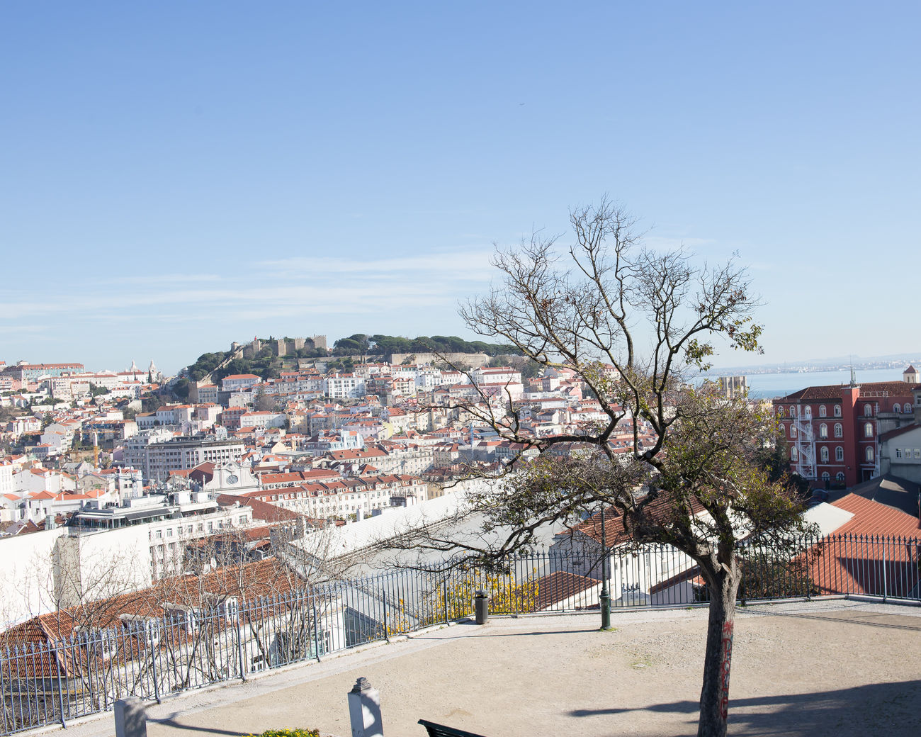 beautiful portugal Architecture Building Exterior City Cityscape Clear Sky Day No People Outdoors Sky Sunlight Travel Destinations Tree