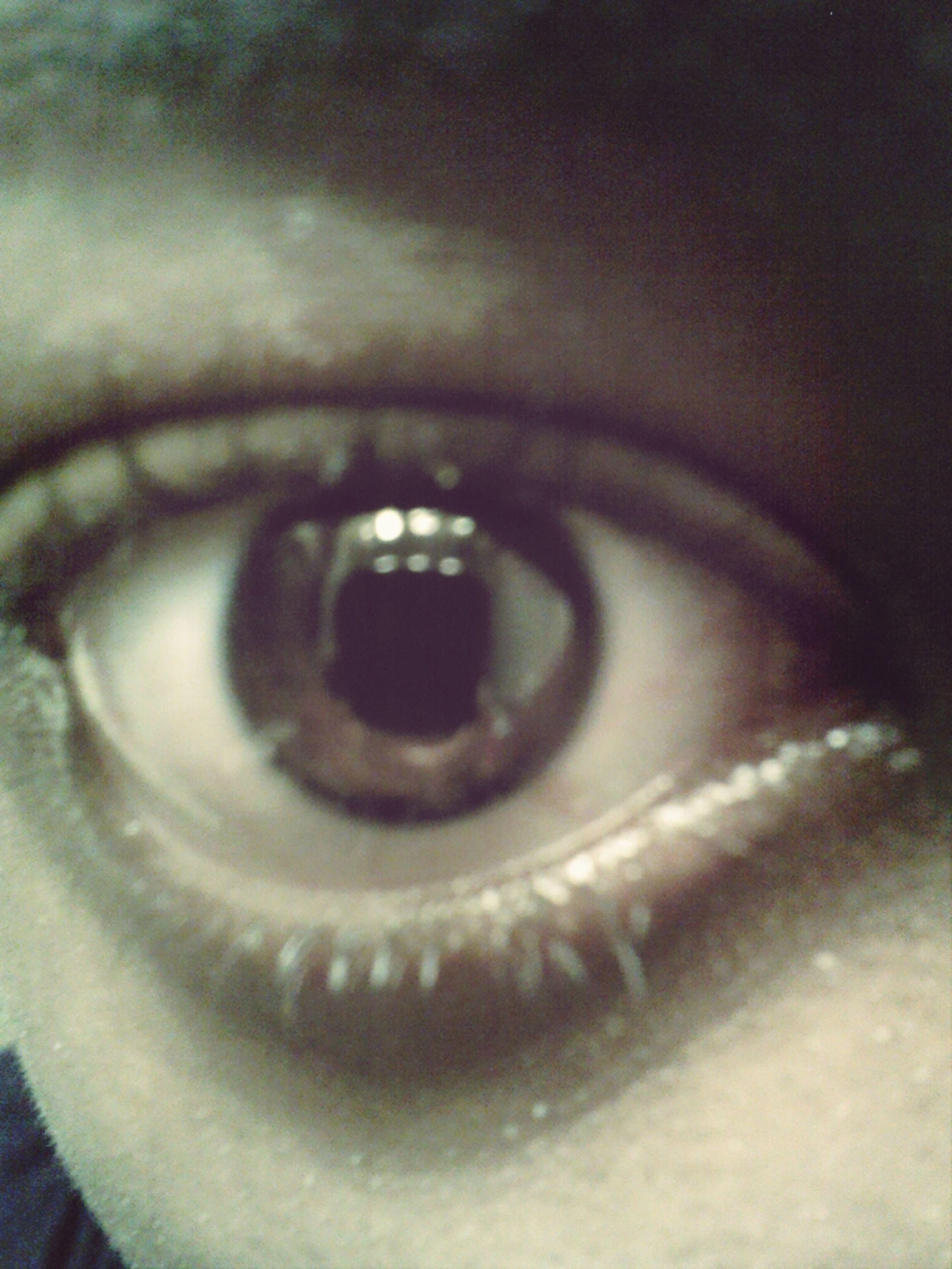 human eye, close-up, eyelash, extreme close-up, eyesight, sensory perception, indoors, extreme close up, part of, full frame, human skin, detail, selective focus, macro, iris - eye, eyeball, unrecognizable person