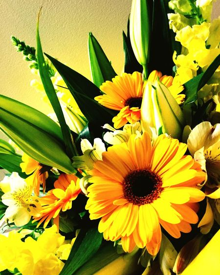Love bright coloured flowers Yellow #flowers First Eyeem Photo