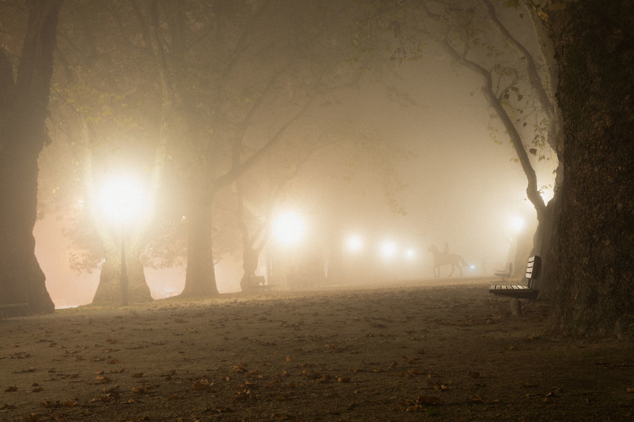 Sleepy Hollow Alley Autumn Fall Foggy Horseman Leaves Lights Linas Was Here Night Park Spooky Trees Woods