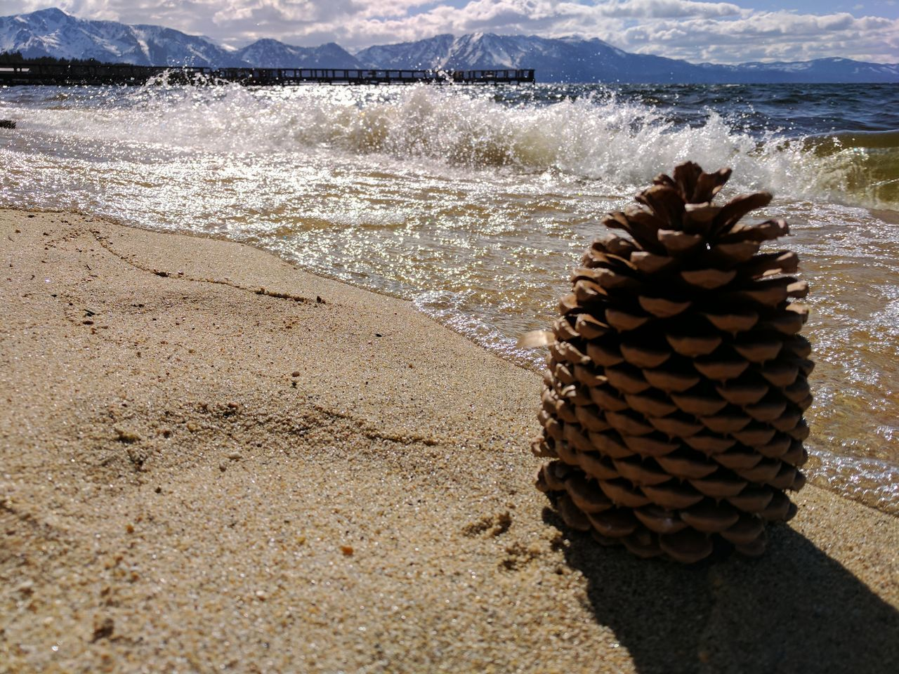 Pine Cone Sand Sunlight Landscape Beach Mountains And Beach Alpine Lake Summer Water Waves Lake Beauty In Nature Outdoors California United States