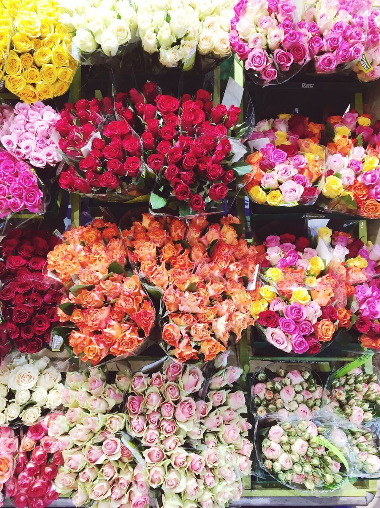 Flowers Freshness Multi Colored Beauty In Nature Flower Shop Choice Happy Weekend !!! Roses