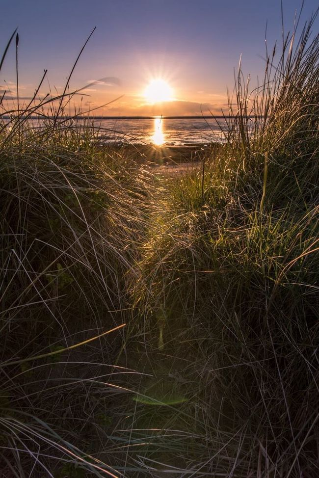 Spurn Point Yorkshire Yorkshire Coast Yorkshire Countryside Hull Hull 2017 Sunset Sunset_collection Sea And Sky Seaside Nikon Nikon D750 Sigma Sigma 24-105 Art Manfrotto East Yorkshire Grass