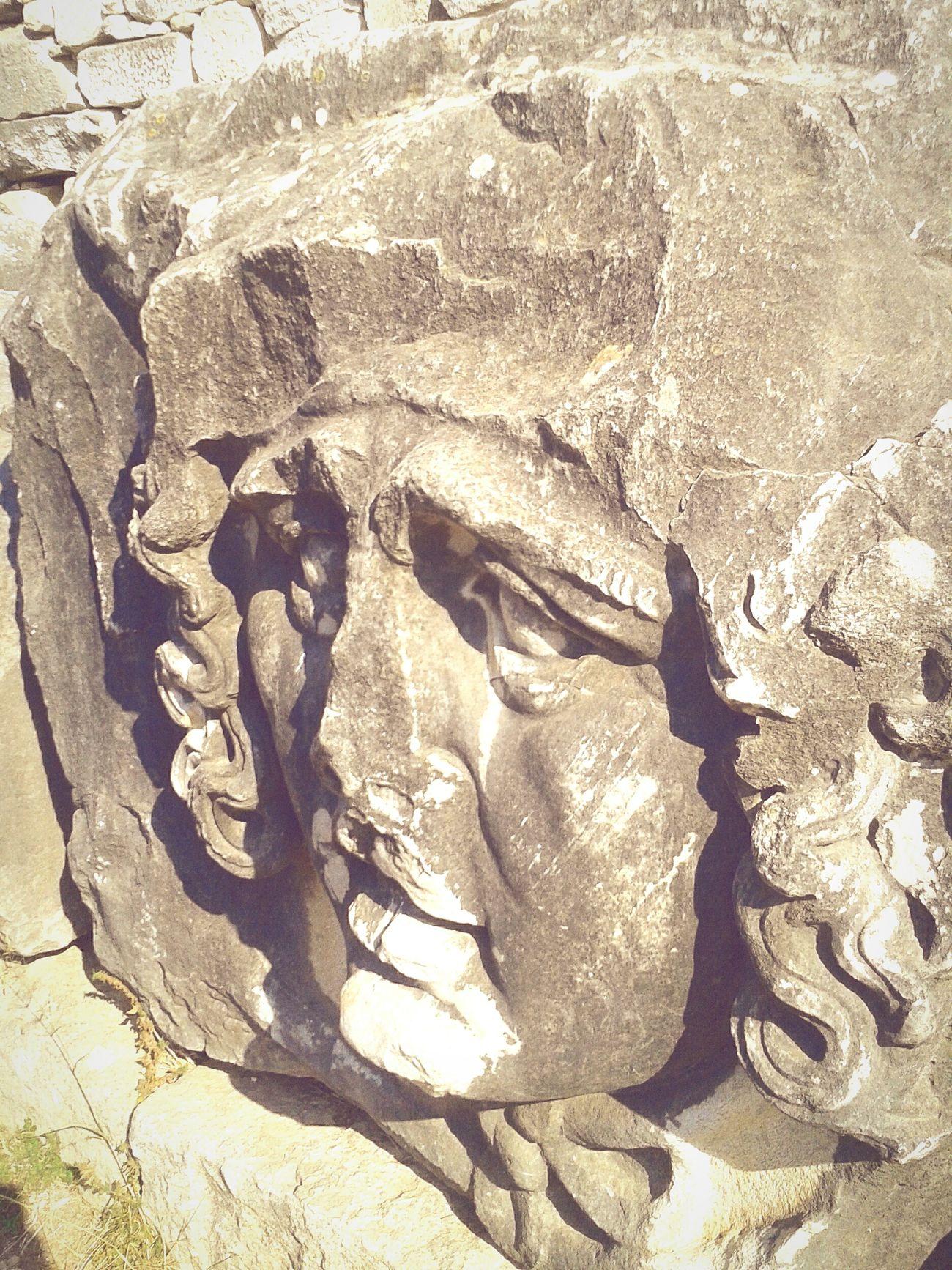 Medusa Medusa Head Medusa In Da House  Historical