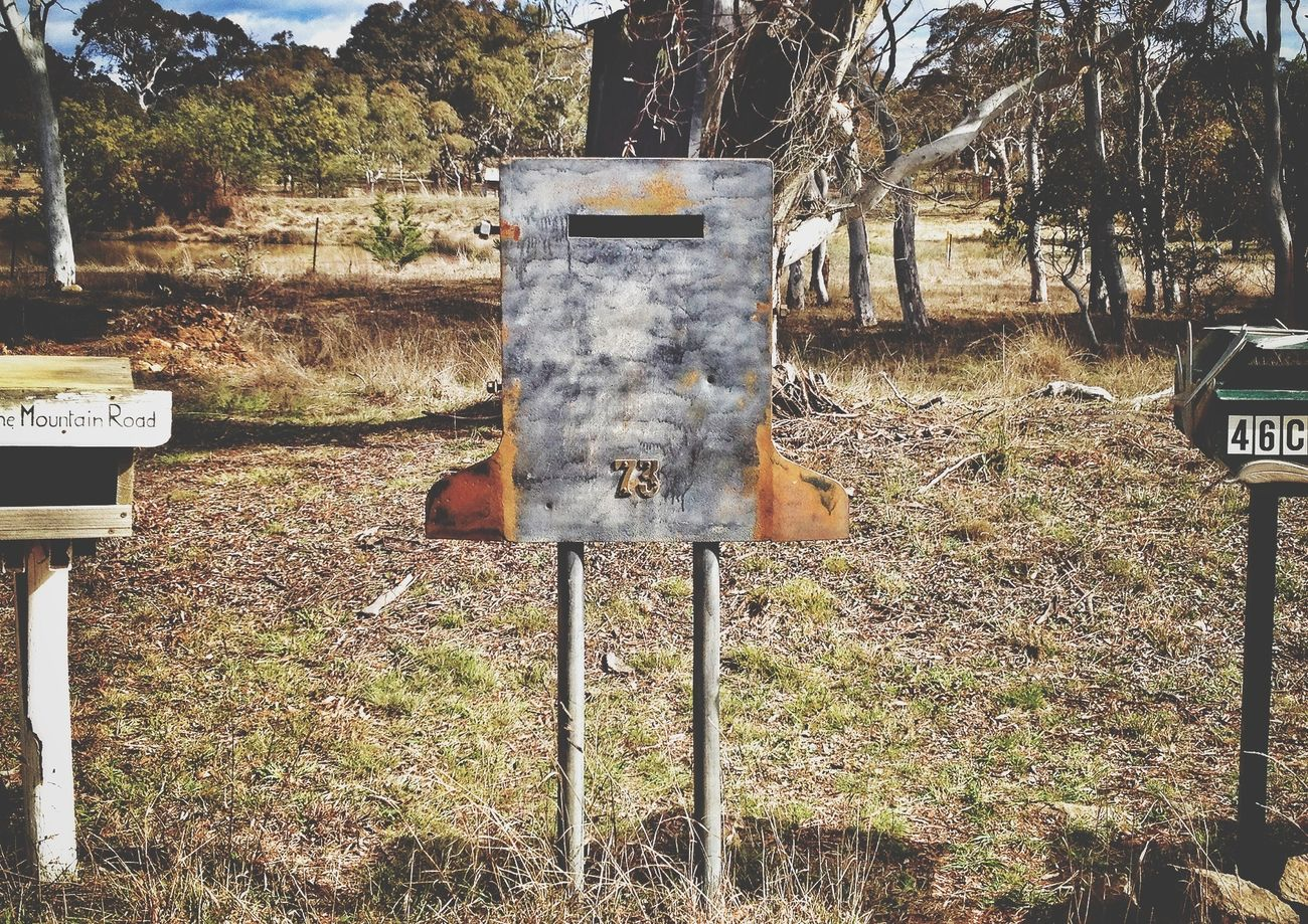 Ned Kelly will be sure to look after your mail Mailbox Countryside Country Life