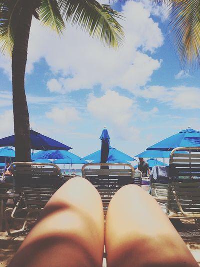 Beach Bahamas Cruise Relax OpenEdit Clouds Ski Bikini Palm Sand