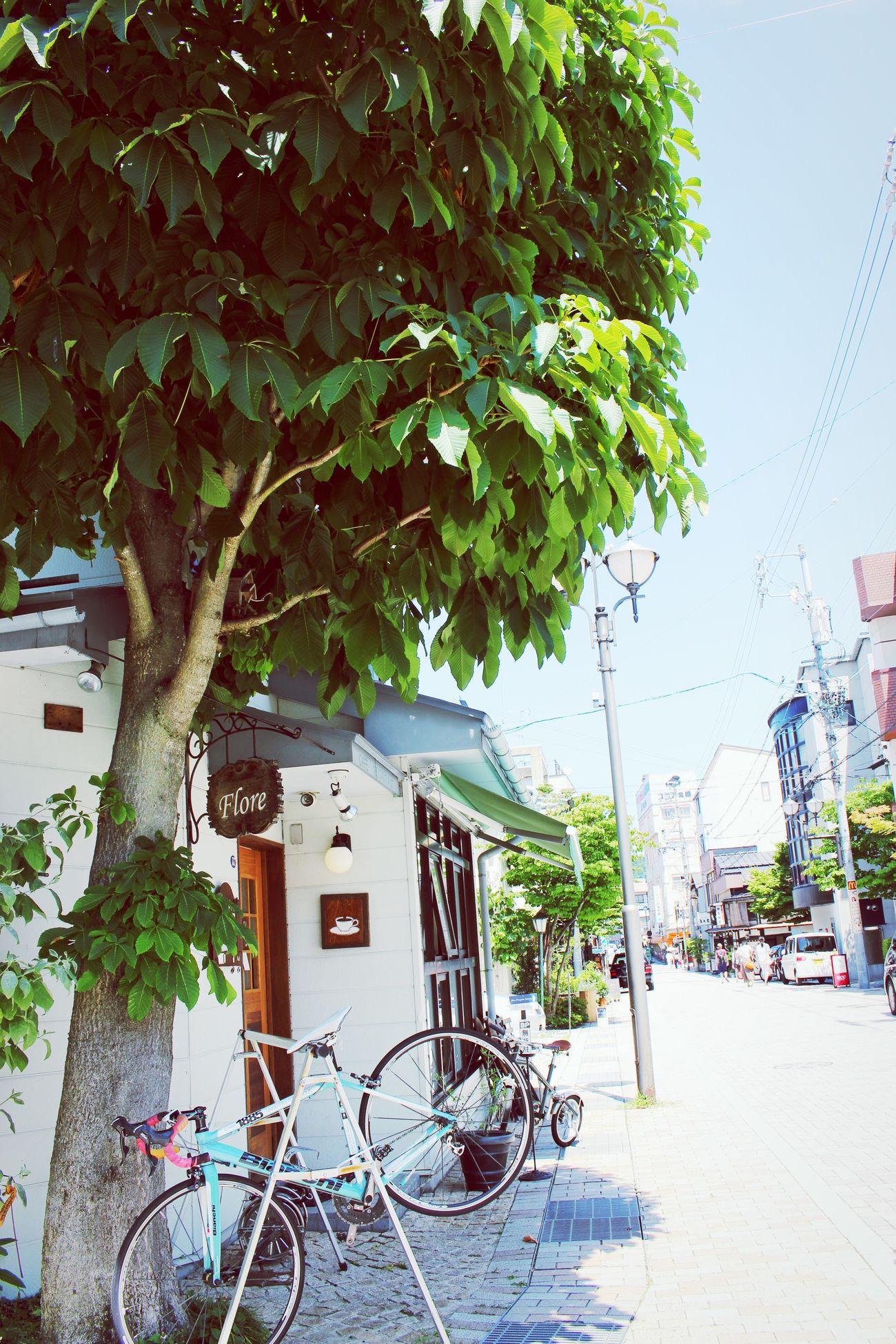 一眼 Japan カフェ Cafe
