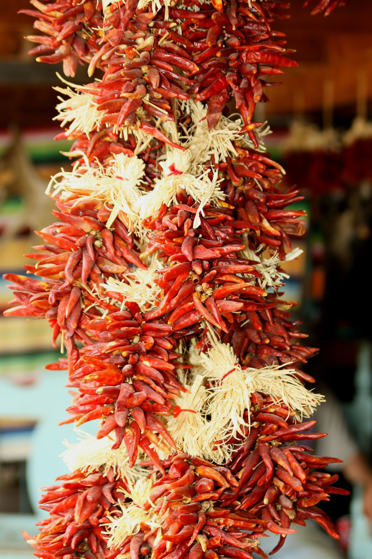 Chilies Ristras Enjoying Life Dried Chillies