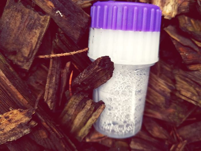 Foaming Water Brown Background Object Photography Woodchips White And Purple Plastic Vials Outdoor Nice Wast No People Close-up Food Quality Day