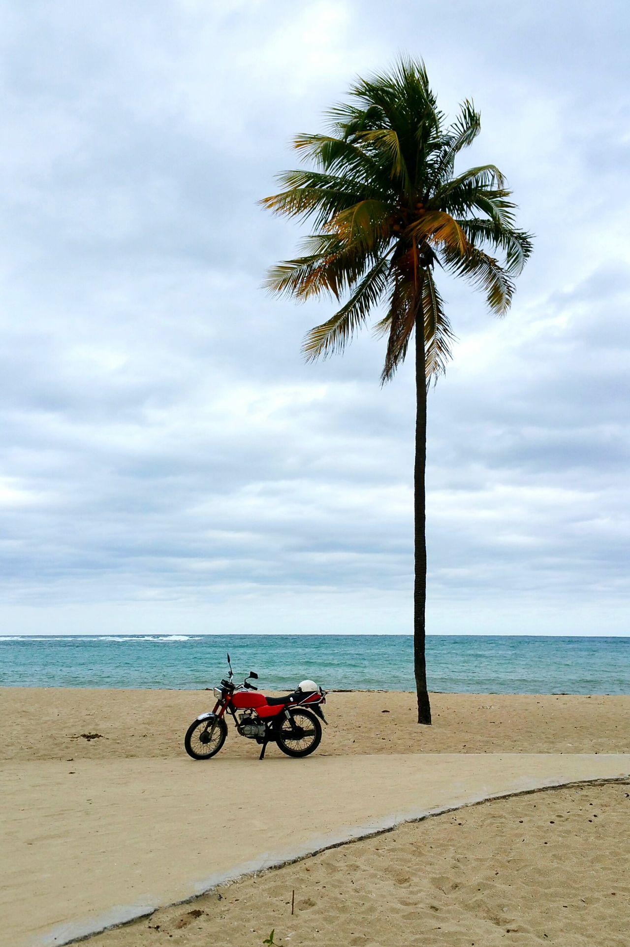 Beautiful stock photos of motorcycle, Beach, Cloud - Sky, Day, Horizon Over Water