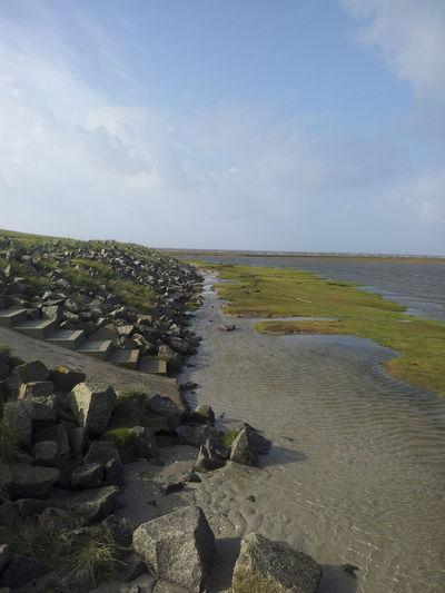 Mud Mud Flat Northsea Sea View Sea Wall Seaside Sky And Clouds Stones & Water