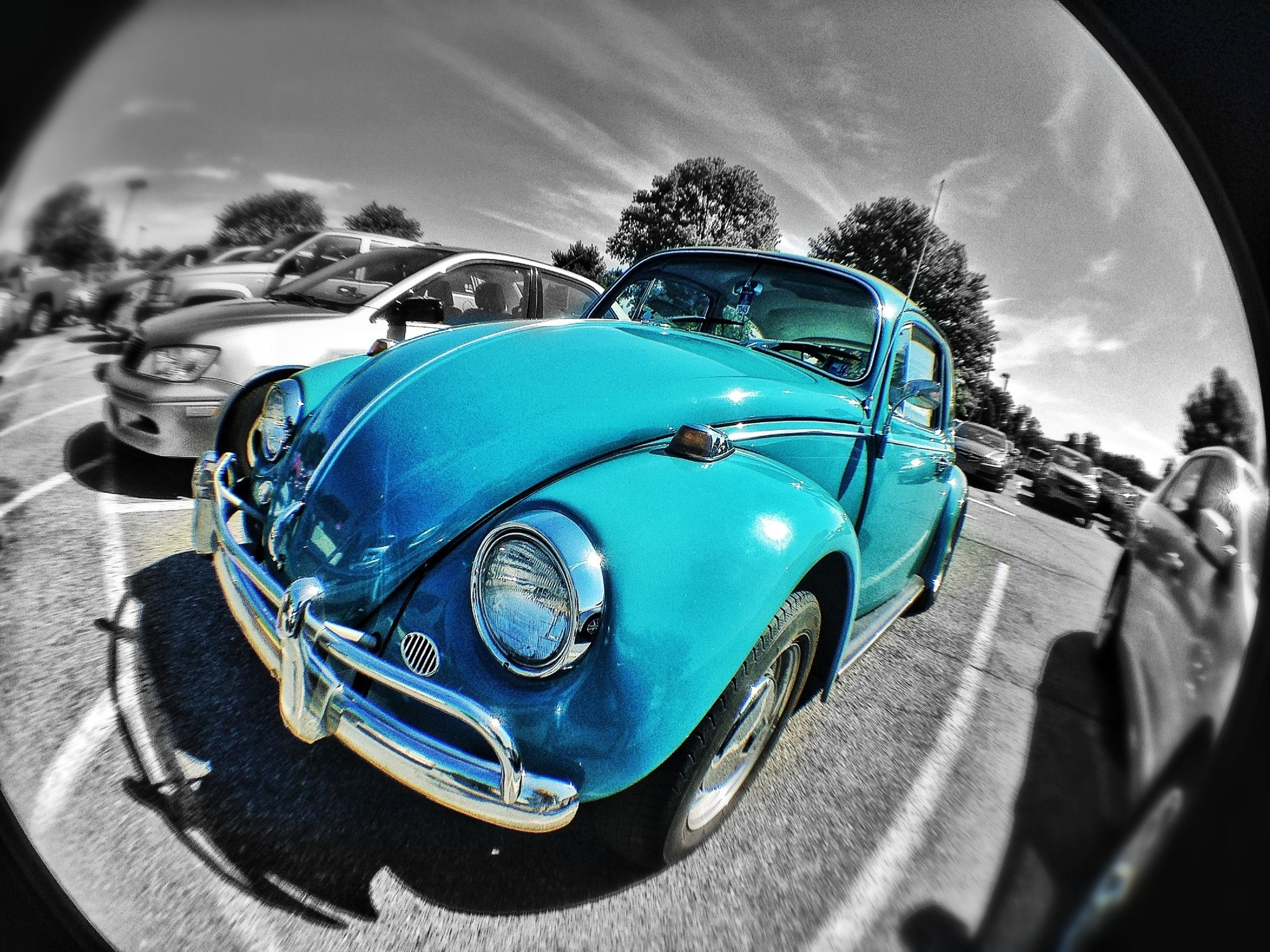 Buggin Out Hdr_Collection FishEyeEm