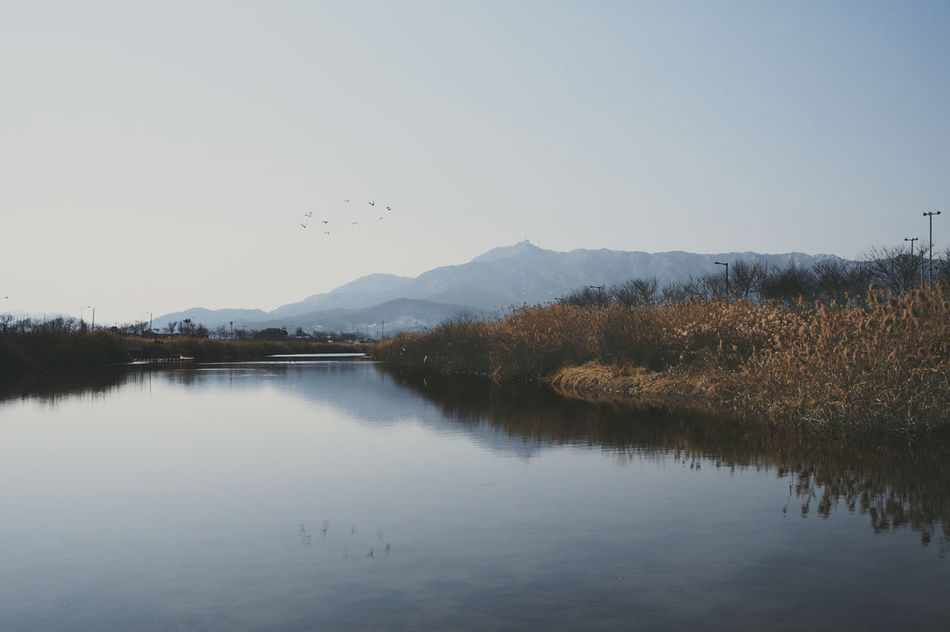 Beautiful stock photos of lake, Calm, Clear Sky, Copy Space, Countryside