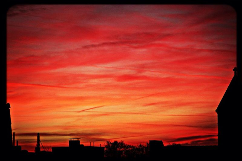Office Sunset Cologne