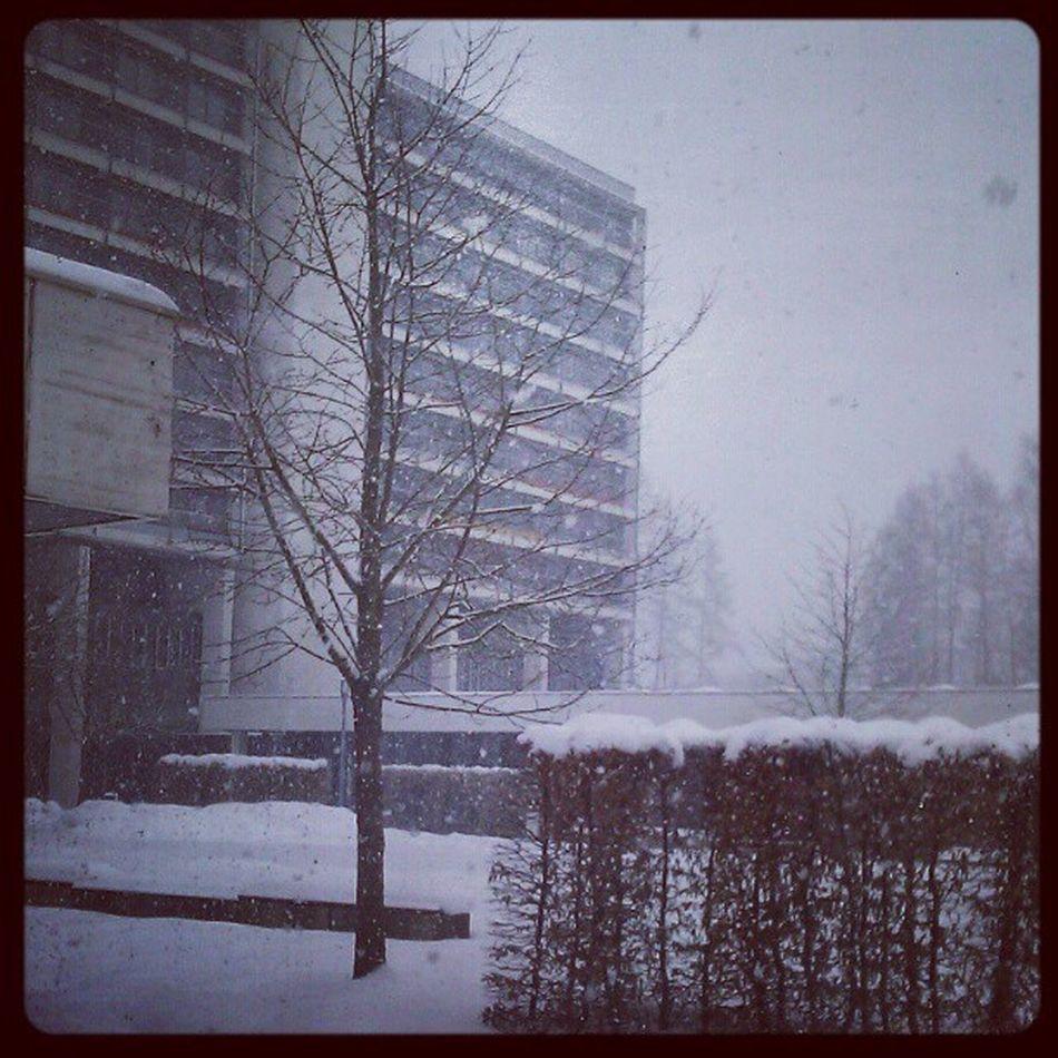 Es Schneit mal wieder... Schnee Winterwonderland