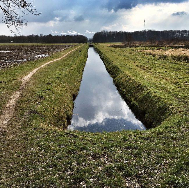 Dutch Landscape Groningen Skyporn Sky_collection Green Water Water Reflections Water_collection Nature Nature Photography Nature_collection