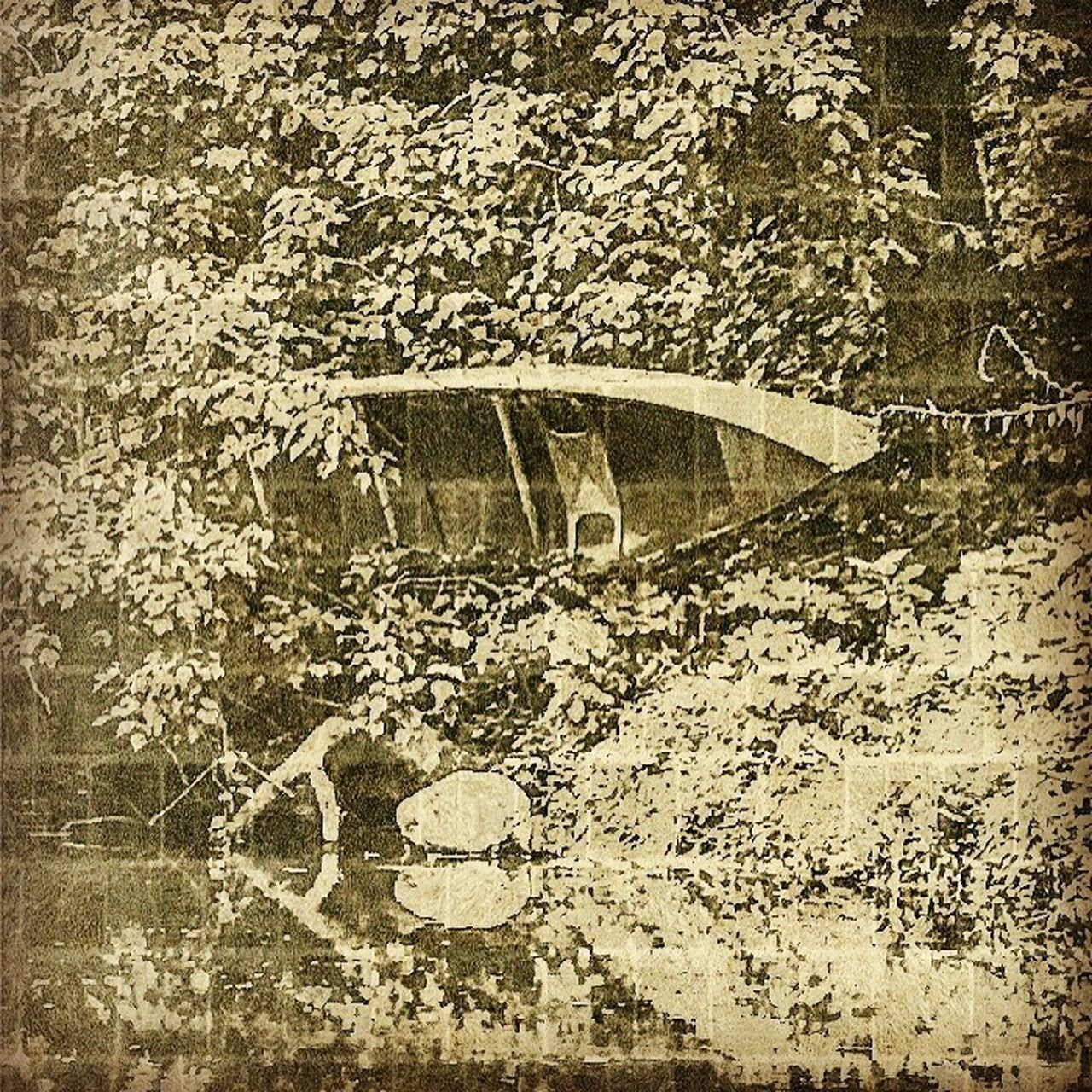 Previous post canoe along the Delaware Day No People Water Close-up Outdoors Camerafilters Landscape Sunlight Iphonephotography Vintage Affect Scenics Mode Of Transport Abstract Photography