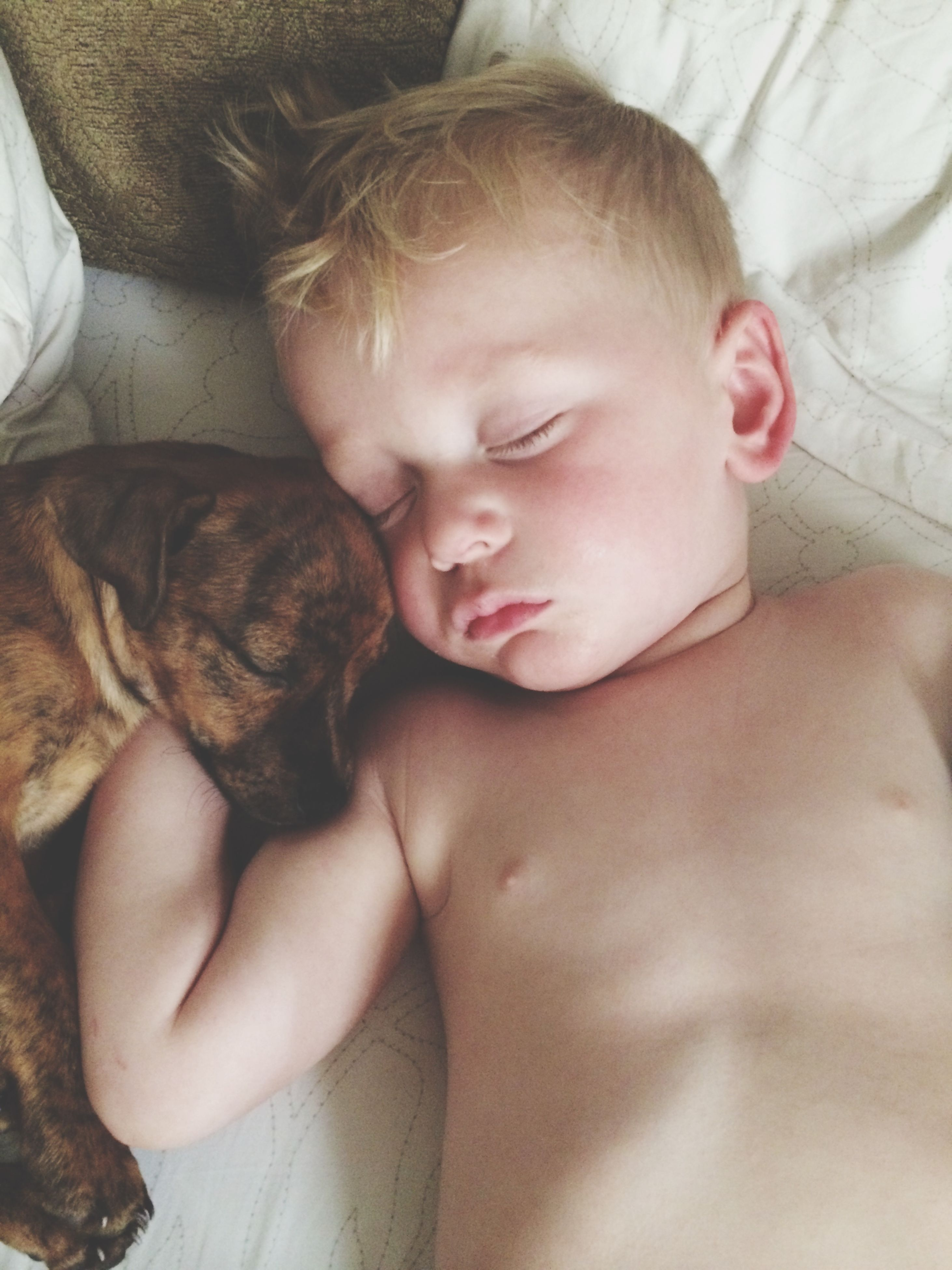 indoors, relaxation, sleeping, lying down, childhood, bed, pets, person, cute, innocence, resting, home interior, domestic animals, baby, animal themes, high angle view, one animal, eyes closed