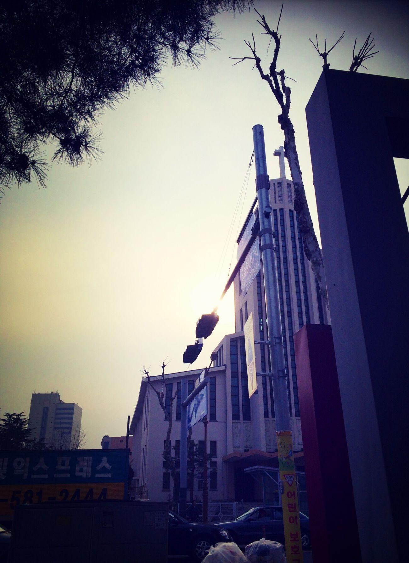 길 건너 대흥동 성당...
