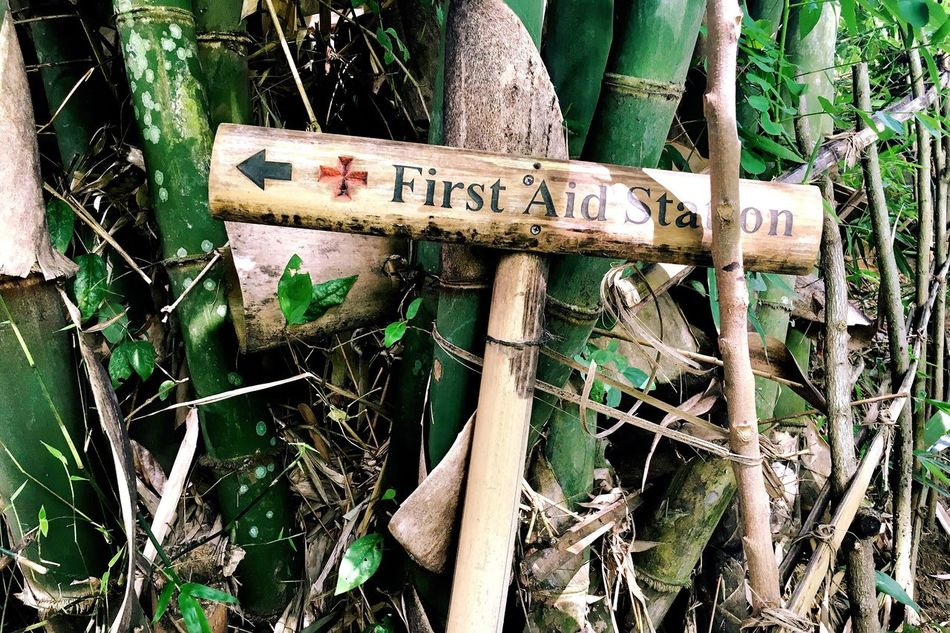 Bamboo Bamboo Sign First Aid First Aid Station First Aid Sign