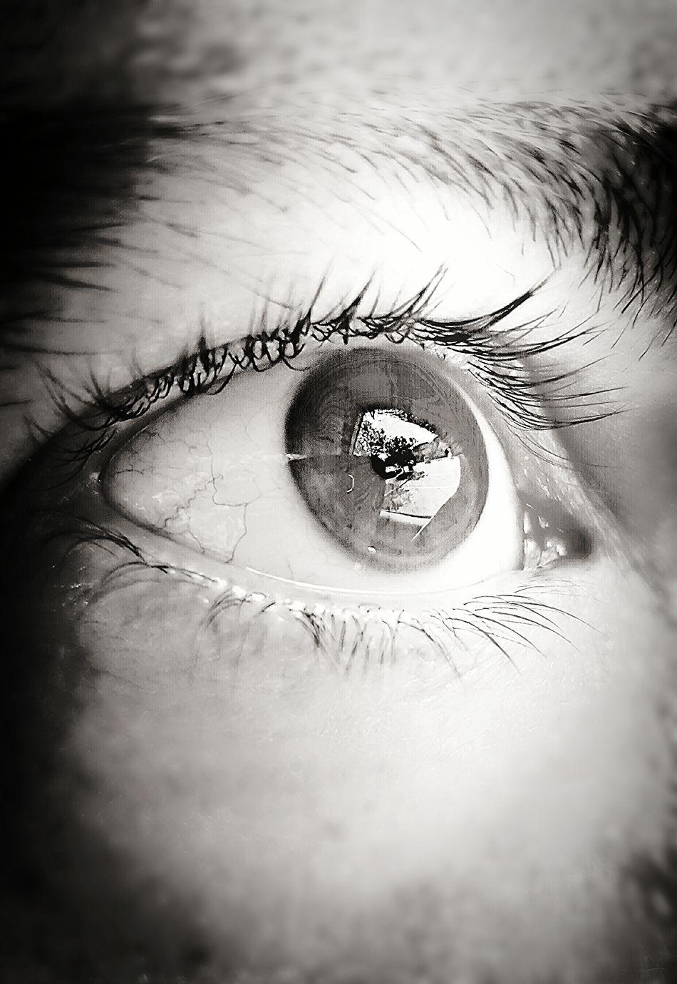 Shades Of Grey My Eye Windows Of The Soul Fine Art Photography