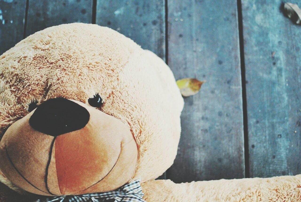 Hug me! Teddy Bear Cute