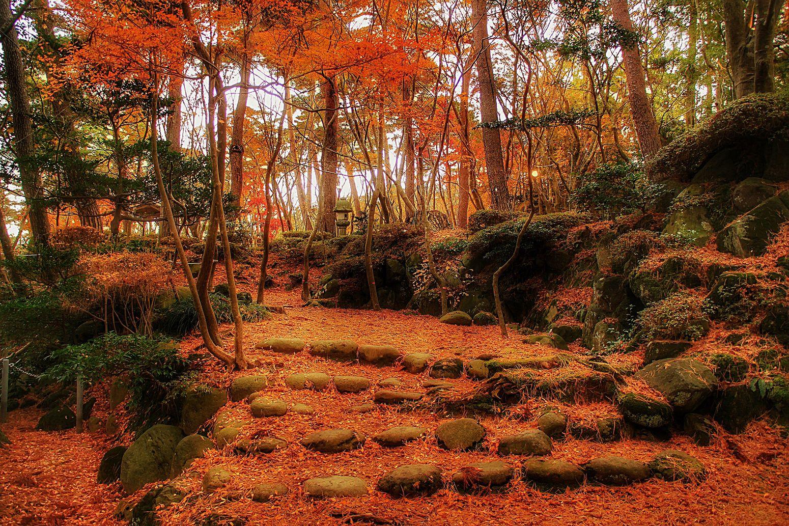 また来年。 赤坂山 柏崎 新潟 Japan 紅葉 あなたと見隊