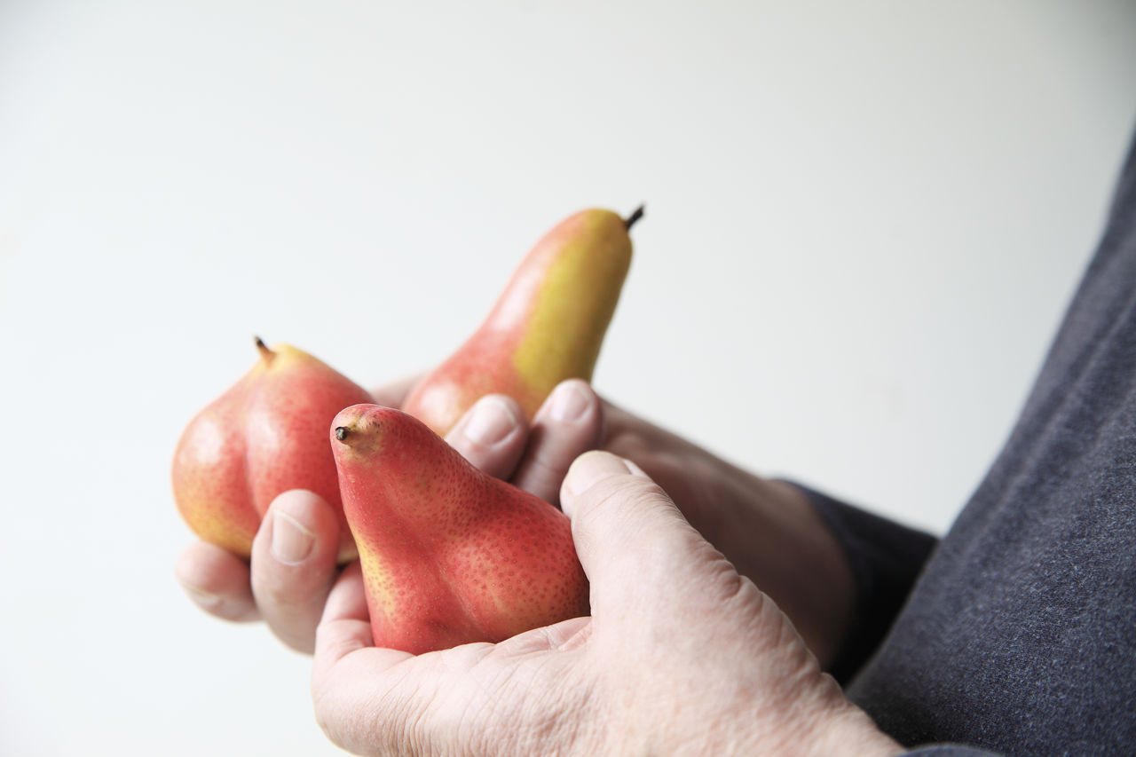 Senior man with fresh pears Autumn Fruits Close-up Copy Space Curvy Fingers Fresh Fruit Hands Healthy Eating Holding Man Natural Light One Person Pears Produce Raw Food Red Snack Speckled Studio Shot Textures White Background