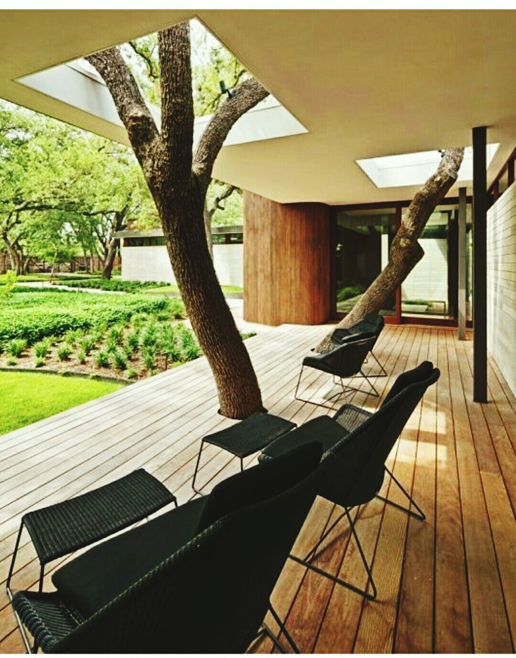 chair, no people, home interior, wood - material, tree, day, luxury, indoors, architecture, nature, home showcase interior